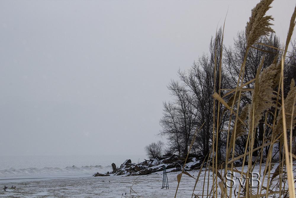 Фотографии зимой