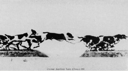 Оттомар Аншютц.Собачья свора. 1882-1883.